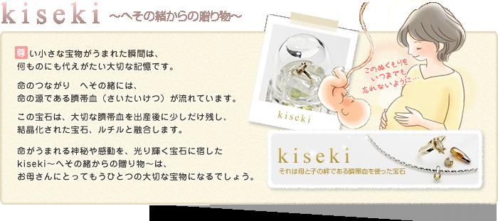 kiseki~へその緒からの贈り物~